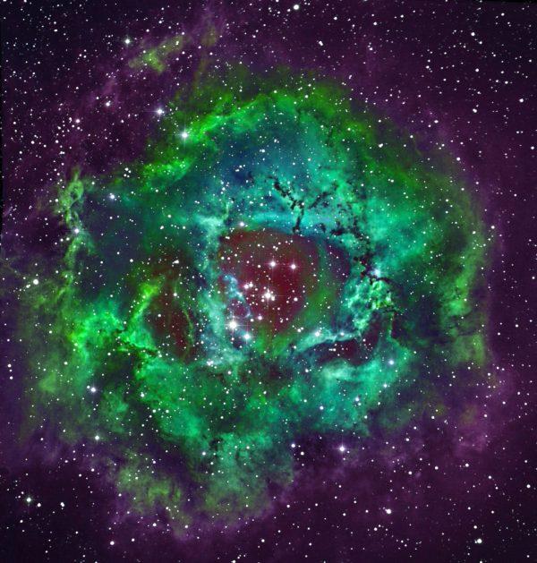 NGC 2239 - Rosette Nebula - Hubble Palette