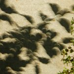 Eclipse Shadows