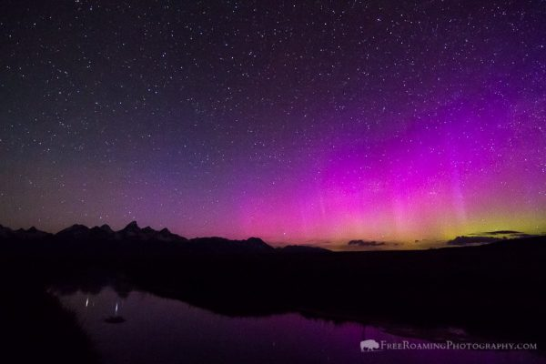Auroras and Tetons Reflected in Stream